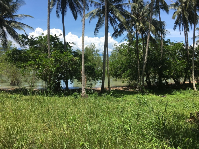 Amazing Land in Koh Yai Noi for Sale-Land-Phangnga-Sale01.jpg