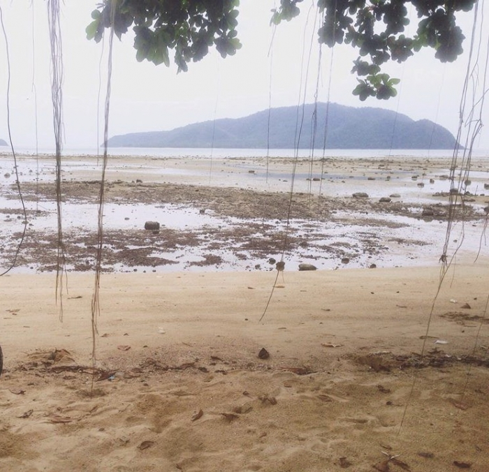 Land in Rawai for Sale-5(1).jpg
