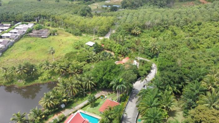 9 Rai Land in Layan for Sale-Land-Layan-Sale05.JPG