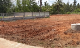 Phuket Tropical Property - Flat land in Thalang for sale