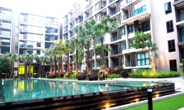 Phuket Tropical Property - Urban life style condo in Phuket city for Rent
